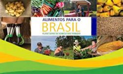 AGRICULTURA FAMILIAR - Acordo pretende aumentar consumo de alimentos