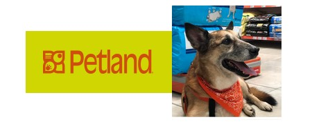 """PETLAND Rede lança Campanha """"Ninguém conhece o seu pet como a Petland"""""""