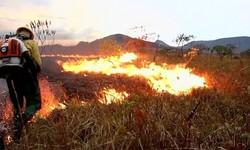 CHAPADA DOS VEADEIROS - Incêndio já queimou 6,5 mil hectares