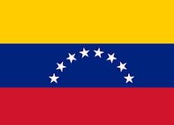 Apoiadores de Guaidó deixam embaixada da Venezuela em Brasília