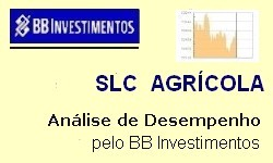 SLC AGRÍCOLA - Resultado no 3º trimestre/2019  Resultado Líquido Negativo