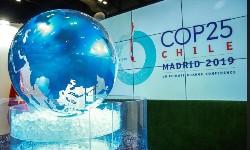 COP25 propõe metas mais ambiciosas para emissões em 2020