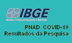 IBGE PNAD COVID19 - 12,5% da População Ocupada está Afastada do Trabalho