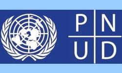 PNUD confirma legitimidade do Processo Eleitoral Boliviano e a Eleição de LUIS ARCE