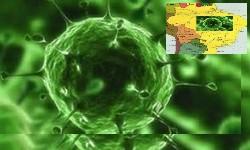 COVID-19 - Brasil soma 172.561  mortos, 587 nas últimas em 24 horas, neste sábado