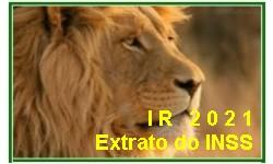 INSS disponibiliza Extrato para Declaração do Imposto de Renda