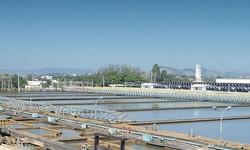 GEOSMINA em Água distribuída pela CEDAE preocupa pesquisadores da UFRJ