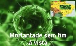 COVID-19 - Brasil totaliza 408.622 óbitos, 983 em 24 hs nesta 2ª feira