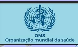 OMS faz Recomendações para evitar Próxima Pandemia