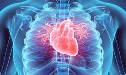 ANVISA alerta para Doenças Pós-Vacinação: Miocardite, Pericardite e Inflação do Coração